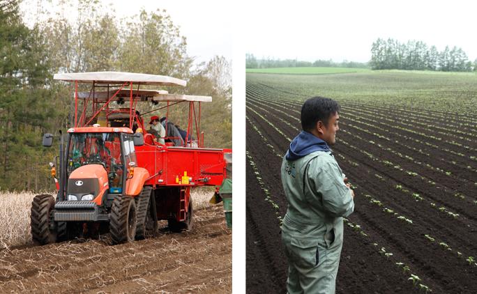 清水町羽帯にある70haの畑で、小豆を中心とした豆類、ジャガイモ、小麦、アスパラガスなどを育てる。