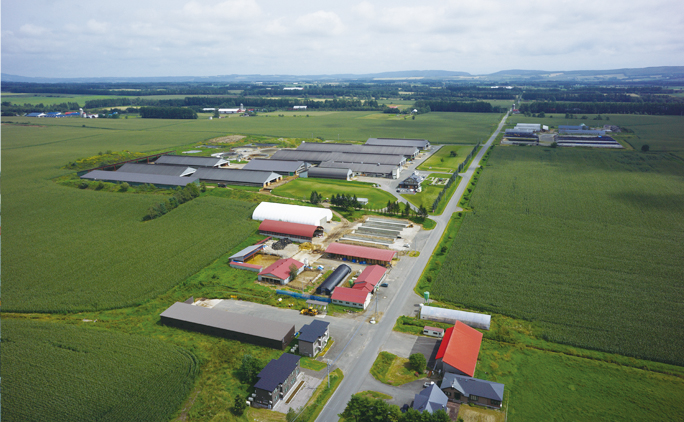 2013年に周辺4軒の酪農家が経営統合することで誕生。2年後には北海道一の出荷乳量を記録、その後も飼育頭数の増加や技術革新を積極的に行い、現在では全国でも第4位の乳量を誇るという。