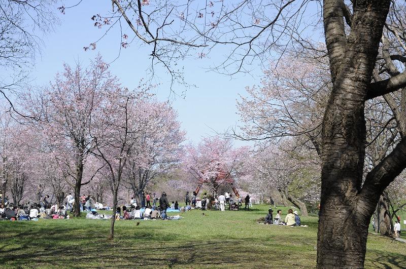 緑ヶ丘公園