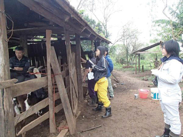 現地の小規模酪農家での調査の様子。